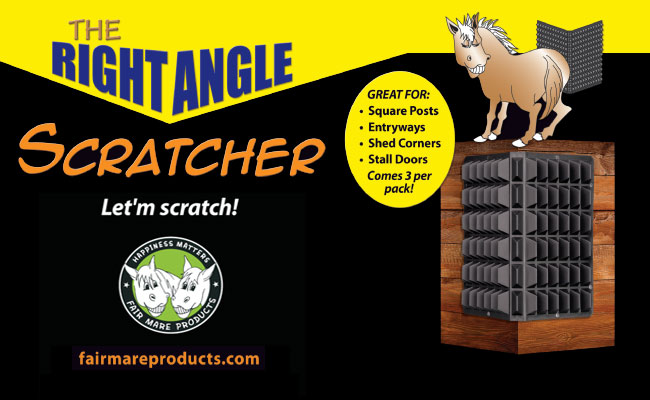 Right Angle Horse Corner Scratcher