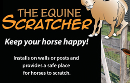 Keep Your Horses Happy